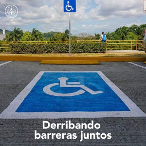 Señalización Estacionamiento Discapacidad